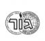 שורת-לוגו_11